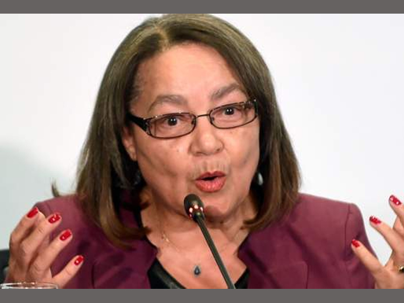 Maimane: De Lille, Smith special leave was necessary