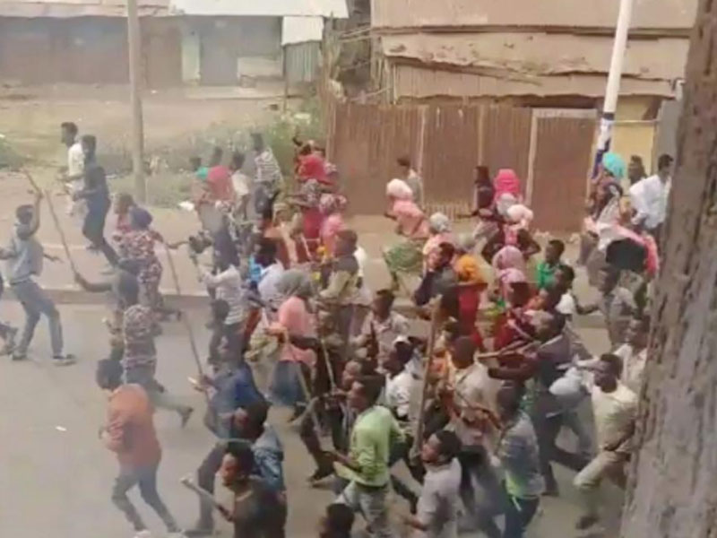 Mass protests force Ethiopia government to free opposition leader