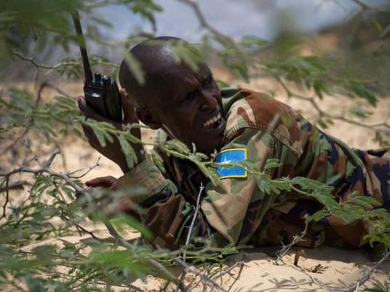 UAE halts military training in Somalia
